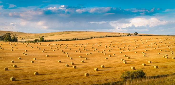 Roling hills farm hay bales